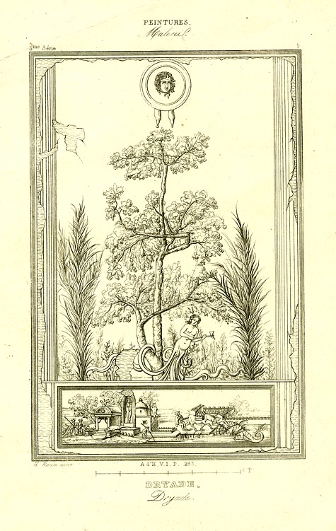 Engraving of a Dryad